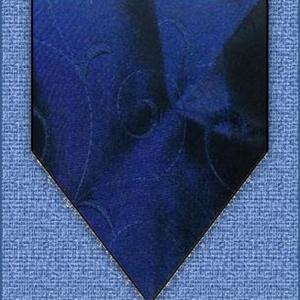 Cody Vest - navy blue